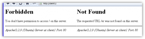 Error pages of an Apache web server.
