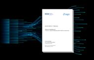 Masterthesis von Julia Taubenberger: Agile Verwaltung